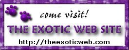 The Exotic Web Site